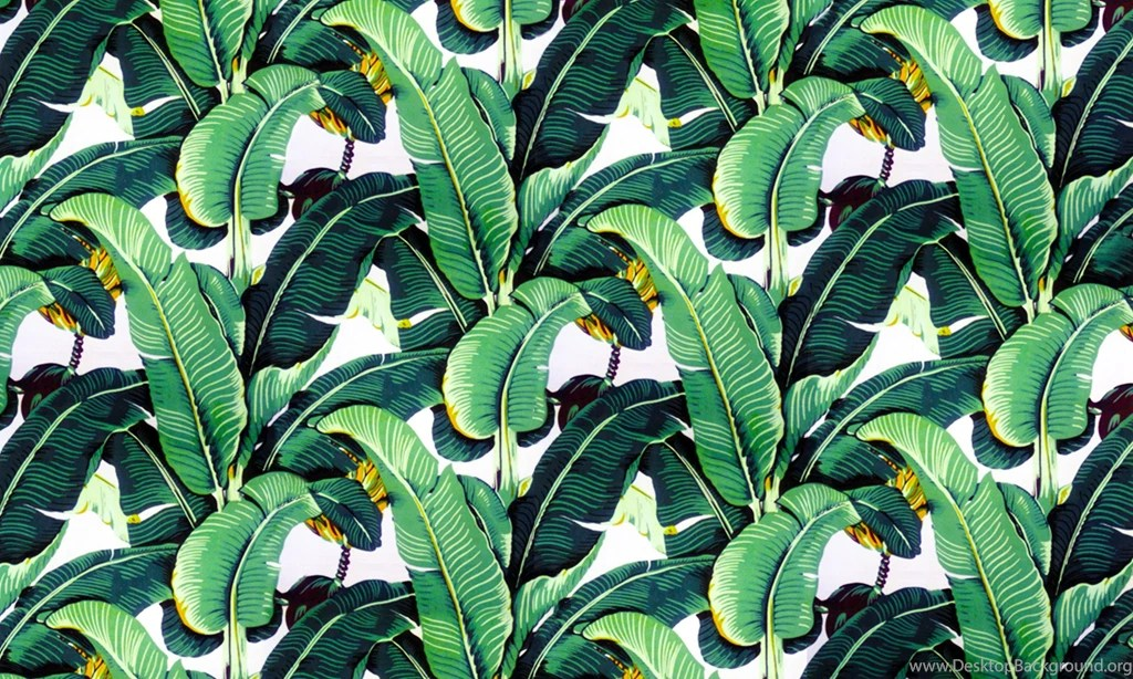 Lavender Color Wallpaper Hd Banana Leaf Wallpapers Design Martinique For The Beverly