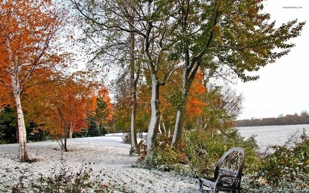 Late Fall Iphone Wallpaper Early Winter Snow In Autumn Wallpapers Desktop Background