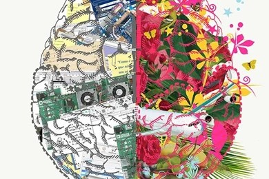Left Brain Right Brain Wallpapers Wallpapers