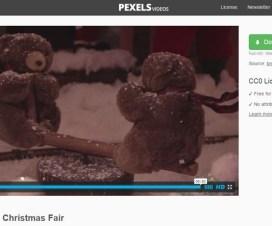 pexels-teddy.jpg