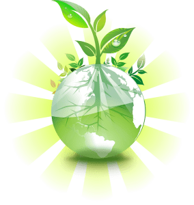 Greener Home Improvement Techniques