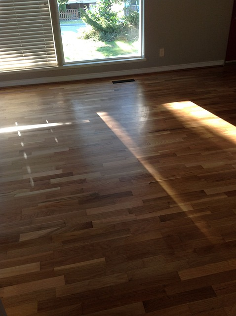 Why I Swear By Hardwood Floors, and Why You Should Too