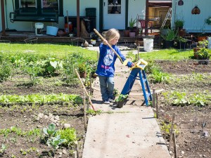 How I Made My Garden Safer For The Kids