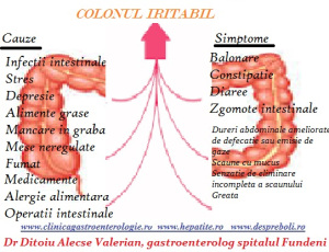 Colonul iritabil, cauze  si simptome