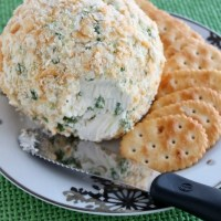 Ranch & Onion Cheeseball
