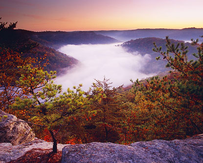 Fall In Central Park Wallpaper Red River Gorge