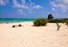 Viagens de maio a outubro para a República Dominicana