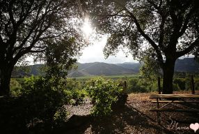KOA Ventura Ranch Review: California Glamping At Its Best