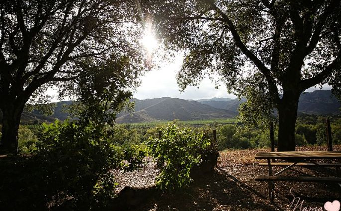 KOA Ventura Ranch: Glamping in California
