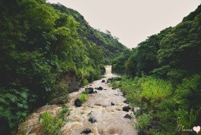 Waimea Valley: A Travel Photo Essay