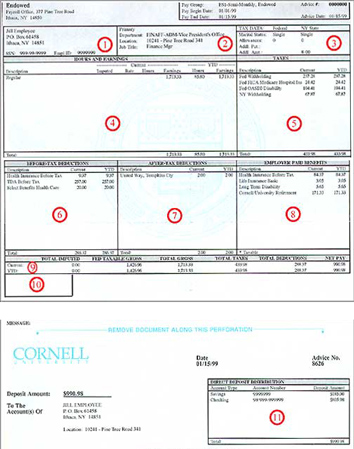 Understanding Your Paper Pay Stub Cornell University Division of