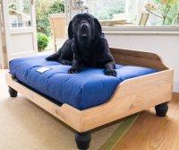 Berkeley Raised Wooden Dog Bed | English Oak | UK Made