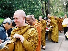 Studying Quotes Wallpaper Ajahn Brahm Dhamma Wiki