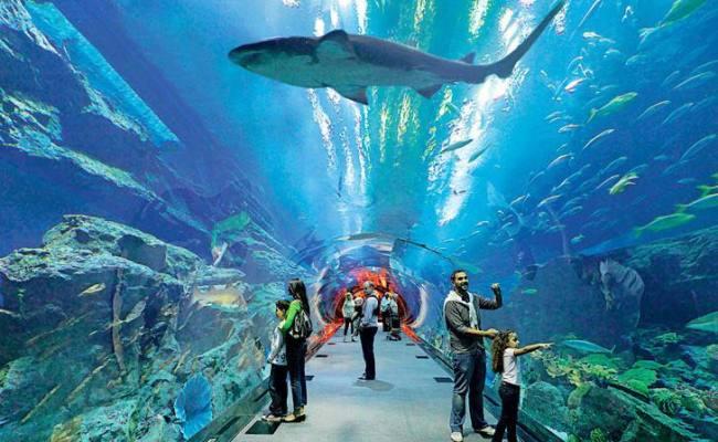 Dubai Land Of Superlative Things To Explore
