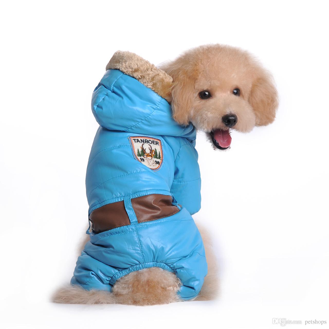 Fullsize Of Dog Winter Coat