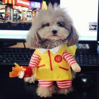 Best Pet Cat Dog Cosplay Mcdonald Costume Small Dog Puppy ...
