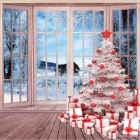 2019 Beautiful Winter Snow Outside Window White Christmas
