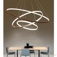 Circle Light Fixture - Light Fixtures