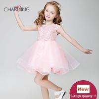 Little Girl Flower Girl Dresses Pink High Quality Designer