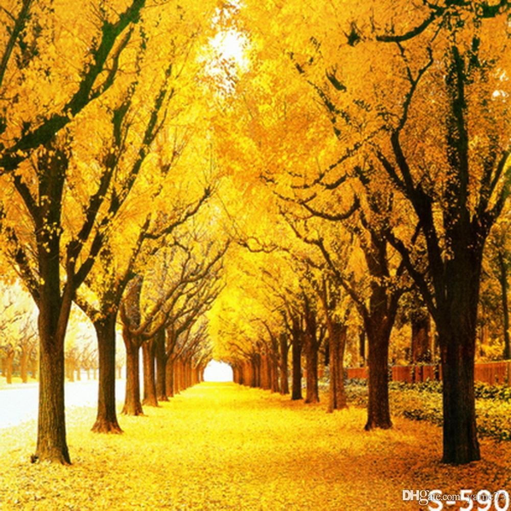 Computer Desktop Hd Wallpapers Fall Nyc 2018 5x7ft Vinyl Autumn Fall Yellow Tree Photography