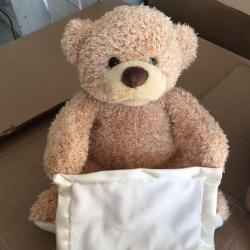 Small Of Peek A Boo Bear