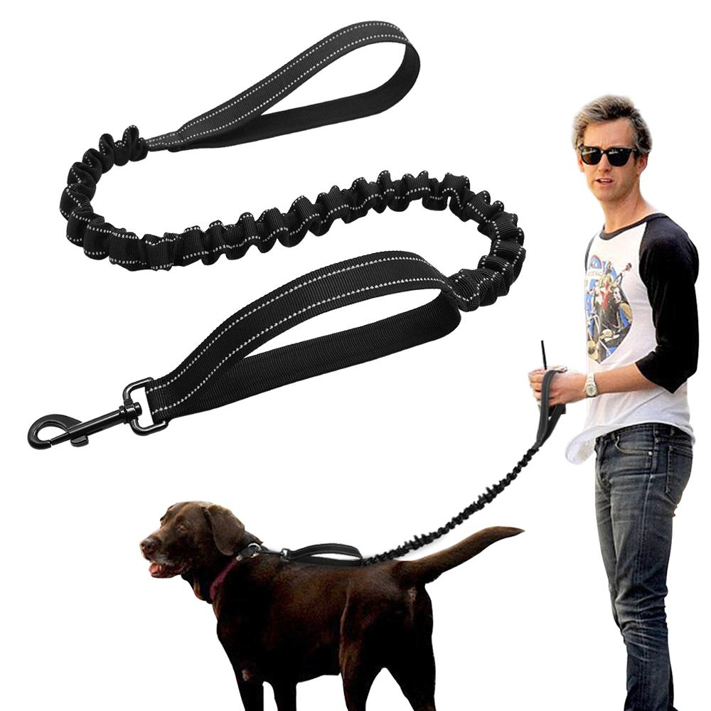 Great 2018 Didog No Pull Nylon Dog Leash Reflective Pet Walking Bugee Leasheswith Handles Hands Free Black From 2018 Didog No Pull Nylon Dog Leash Reflective Pet Walking Bugee bark post Hands Free Dog Leash