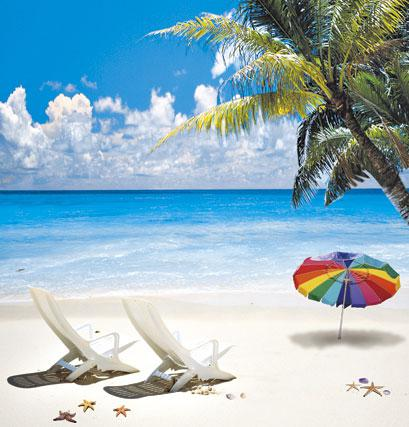2019 Summer Vacation Island Coconut Tree Sea Scenic Studio