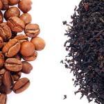 coffee-vs-tea-L-DiZXCX