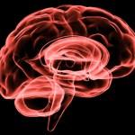 brain_stroke_1