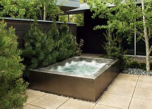 Commercial Spa Swim Spas Designs High End Spas