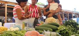 Comuna le apuesta al desarrollo económico en el sector agrícola del municipio