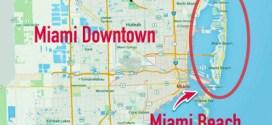 Llegó el zika a Miami Beach y piden a las embarazadas evitar la zona