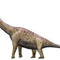 El primer dinosaurio terrestre hallado en Colombia