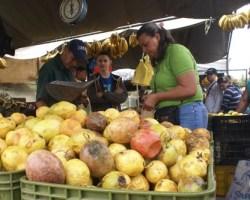 José Echeverría, Presidente de Asovemerpo Reiteró que todo lo que produzca la tierra lo hay, por lo que hay frutas y hortalizas que han bajado de precios notablemente