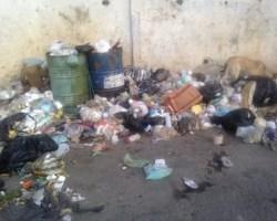 Freddy Cimino exhortó al alcalde Garcés a que trabaje en favor del pueblo