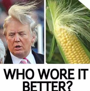 Memes sorprendido Donald Trump2