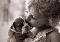 438affb66b2cff9f29522c71d666112a--puppy-love-new-puppy