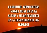 agradecimiento4-0fdg