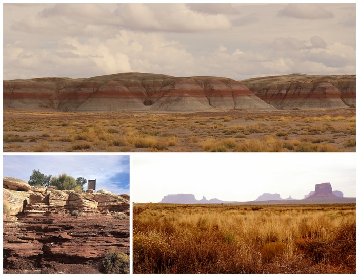 Petrified Forrest, Monument Valley