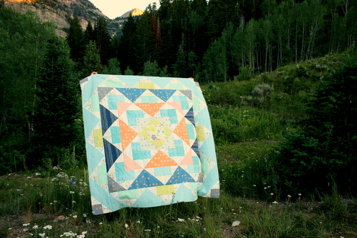 Palisades Quilt Top Amy Smart