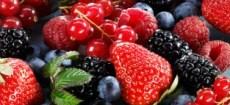 Frutos Silvestres