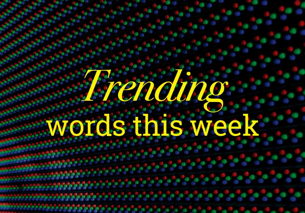 Handsome And Other Trending Words On Dictionary - Everything