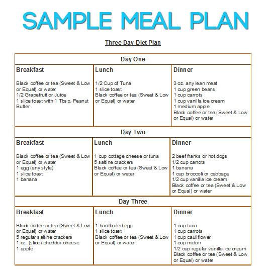3 Day Diet - DietDiet - sample meal planning
