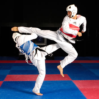 Difference between Taekwondo and Karate Taekwondo vs Karate