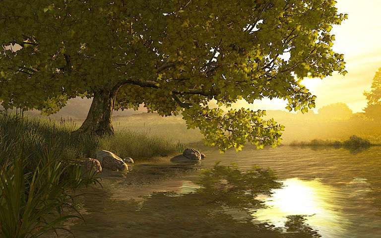 Fish 3d Wallpaper Hd Lake Tree 3d Screensaver Download Animated 3d Screensaver