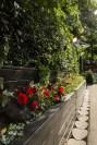 Flowers in Tivoli