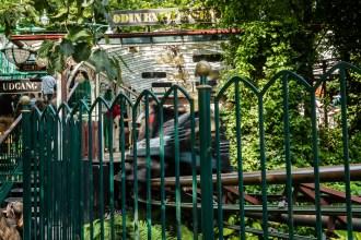 Trains Rush by in Tivoli