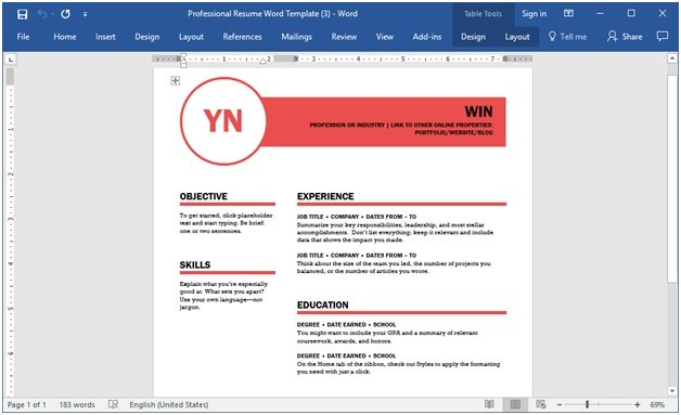 Powerful  Professional Resume Templates To Help You Land That Dream Job