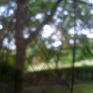 Outside / Inside