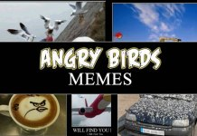 angry birds memes